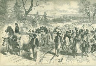 Freed Negroes Coming Into Union Lines at Newbern, North Carolina (Image1)