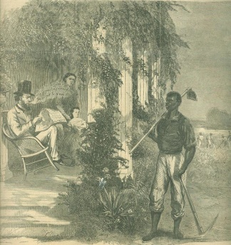 Slave With Hoe And Axe