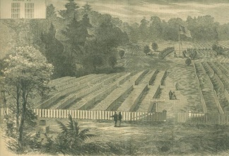 Grounds At Andersonville Prison, Georgia